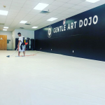 Business as Usual? | Classes are back! Here at Gentle Art Dojo we are finally emerging on the other side of the quarantine and stay-at-home fiasco of the past few months. 1